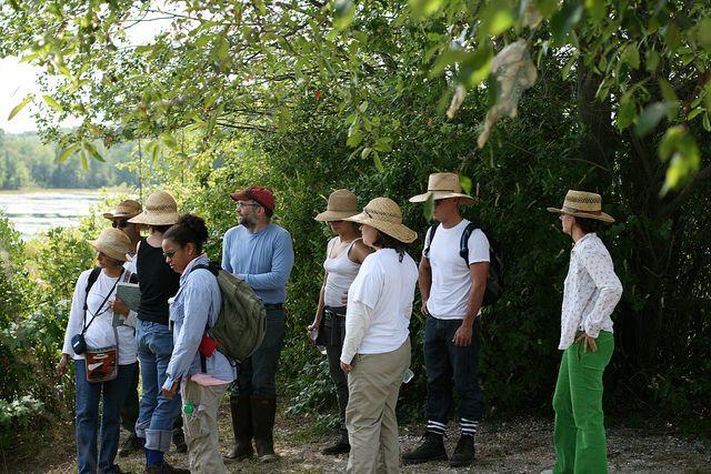 Horticulture Internship | Passions | Horticulture, Botanical