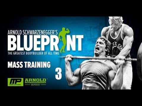 Arnold schwarzenegger blueprint trainer 3 mass training youtube arnold schwarzenegger blueprint trainer 3 mass training youtube malvernweather Image collections