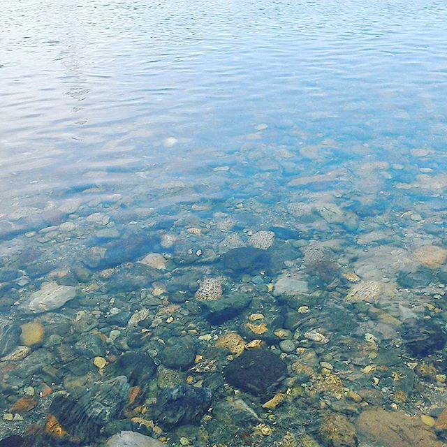 揺らぐ川面 #landscape