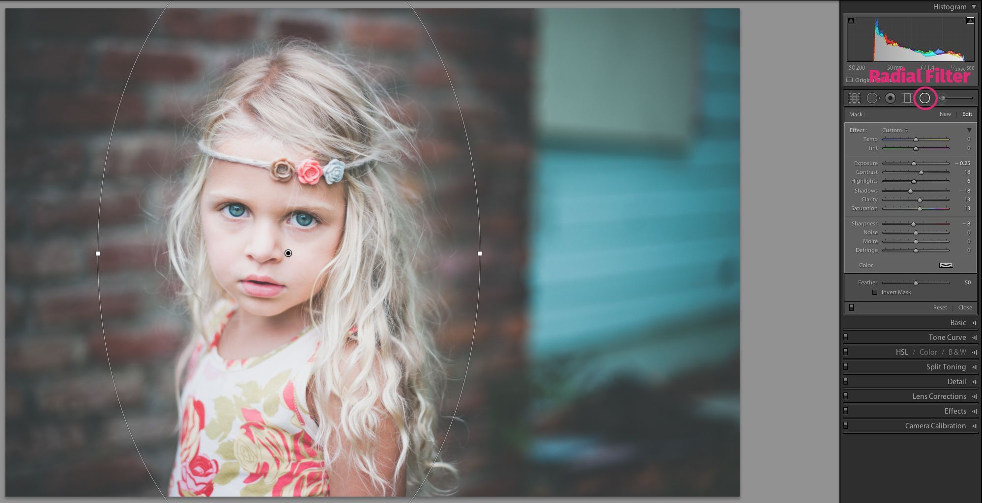 Lightroom in 7 Days: Developing Your Photos Mastering Lightroom in 7 Days: Developing Your Photos | Pretty Presets for LightroomMastering Lightroom in 7 Days: Developing Your Photos | Pretty Presets for Lightroom