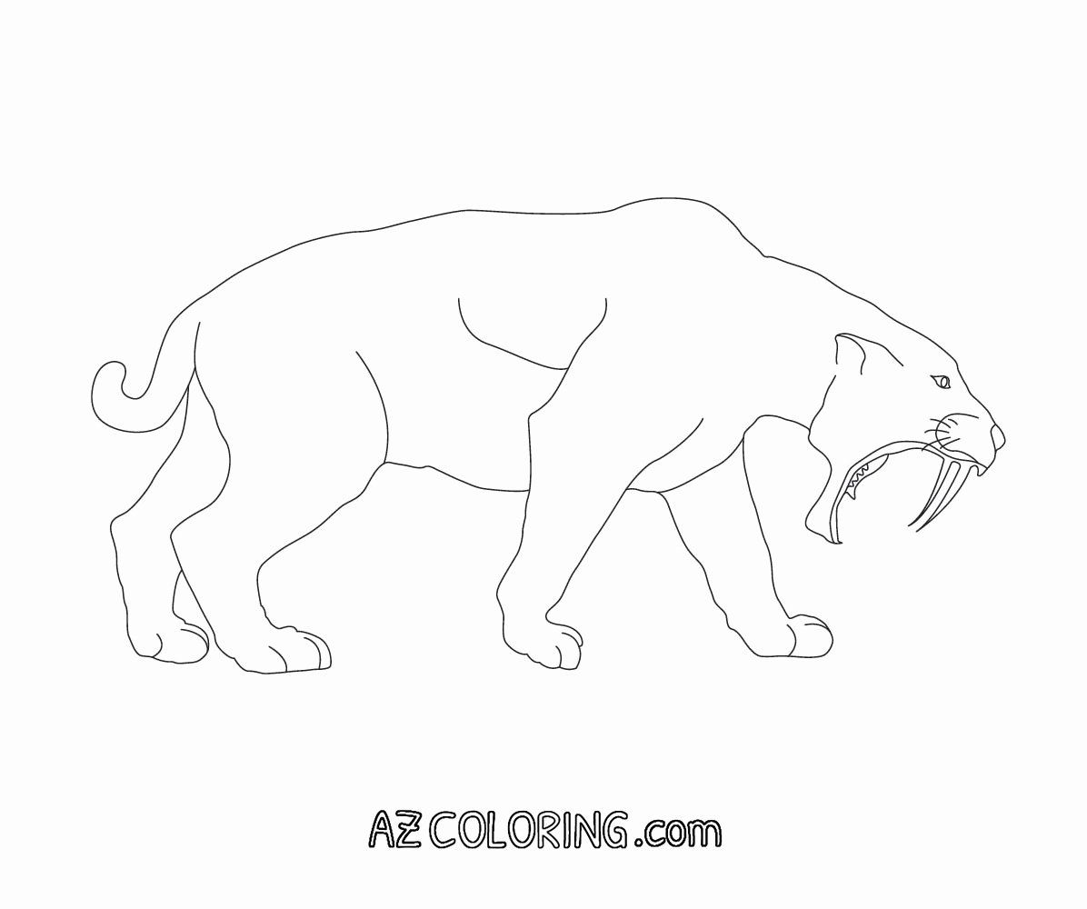 Saber Tooth Tiger Coloring Page Fresh Saber Tooth Tiger Coloring Pages Coloring Home Dinosaur Coloring Pages Super Coloring Pages Animal Coloring Pages