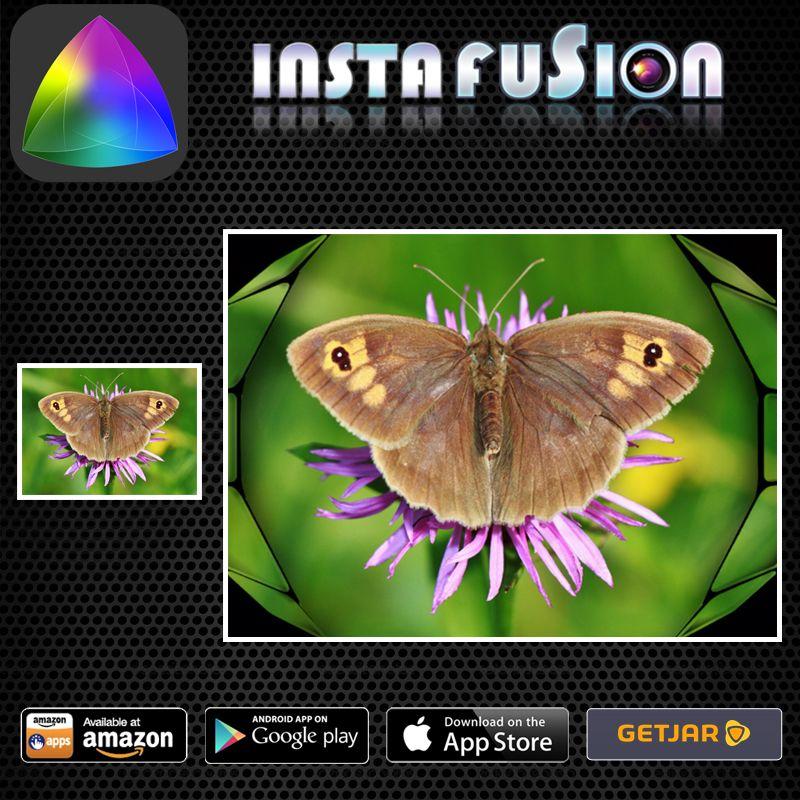 Instafusion Image Blender #instantphotography #polaroid #camera ...