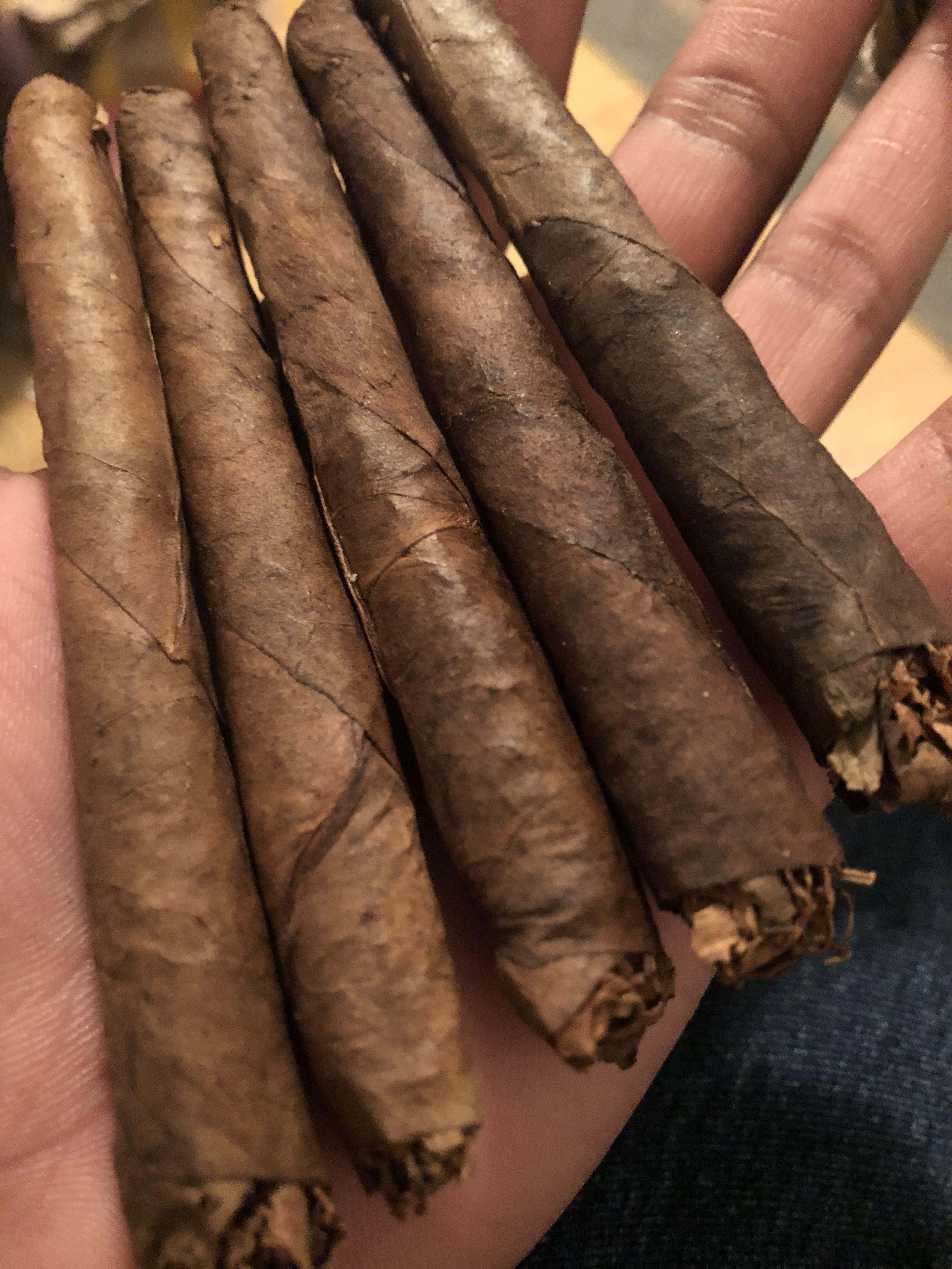 Shade Change . Backwoods Spices, Cinnamon sticks, Food