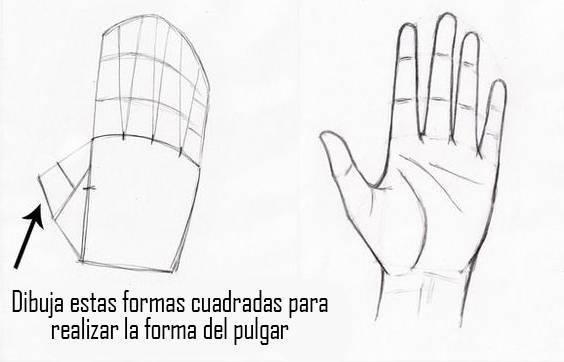 Guia Unica Aprende Como Dibujar Manos Paso A Paso Con Videos