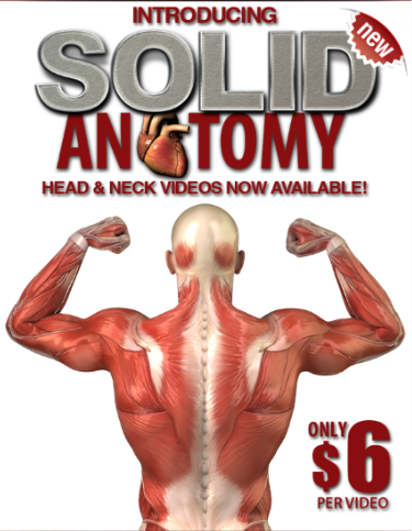 "Solid Anatomy! Watch free video on the ""Eye"" Medical"