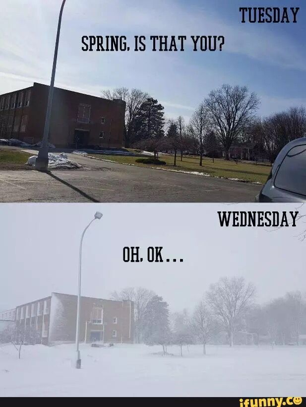 The Truth Behind Michigan S Unpredictable Weather Last Week Funny Pictures Funny Bones Funny