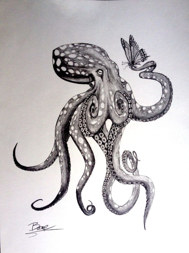 Octopus Shipwreck Drawing Bildergebnis f�...