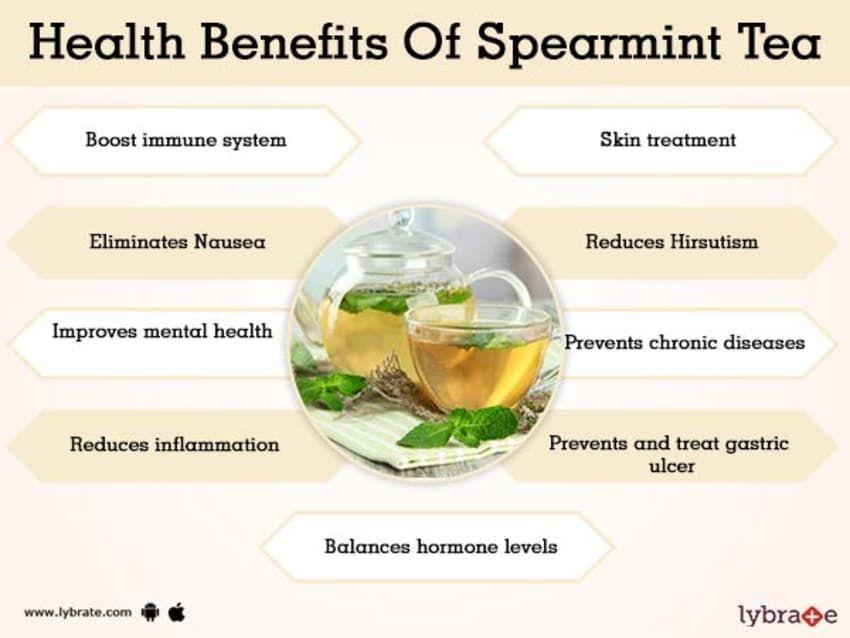 Benefits of Spearmint Tea And Its Side Effects | Pcos