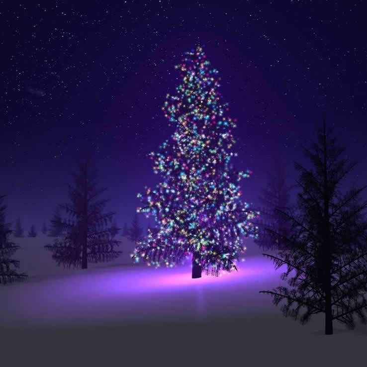 Colorful Firefly Solar Mini Led Christmas Lights On Strings In 2021 Christmas Tree Wallpaper Purple Christmas Tree Christmas Lights Background