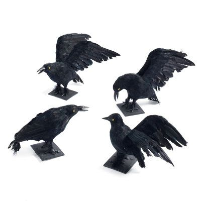 black crows set of 4