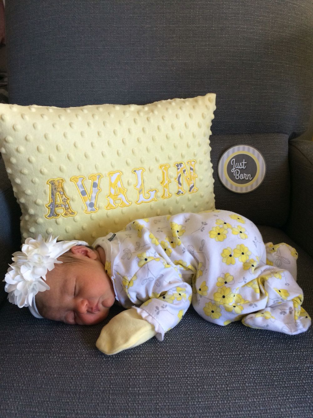 Avalin! With pillow