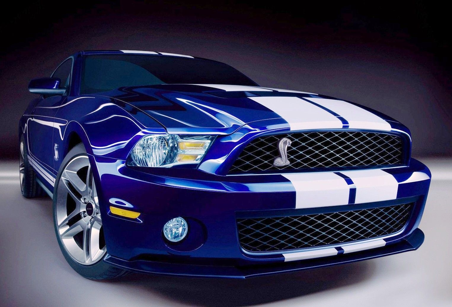 Ford shelby gt500 2014 cars rides blue cobra mustang
