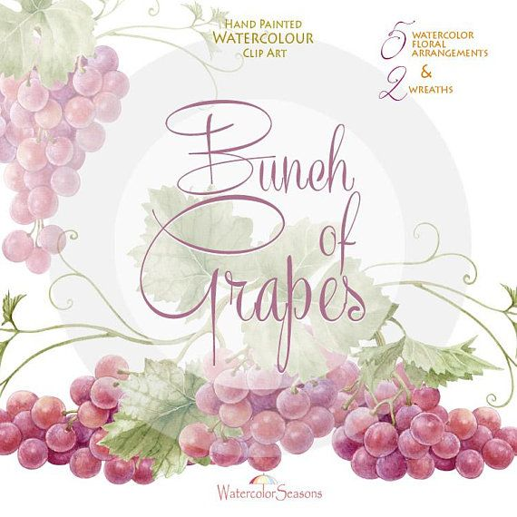 Watercolor Handpainted Clipart Bunch Of Grapes Wine Label