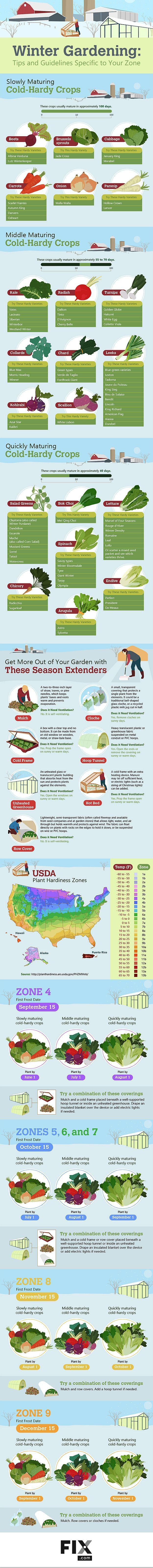 Ultimate Guide To Have An Indoor Garden For Winter