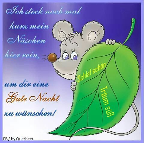 Gute Nacht Meine Kleine Mausi Mit Bildern Gute Nacht