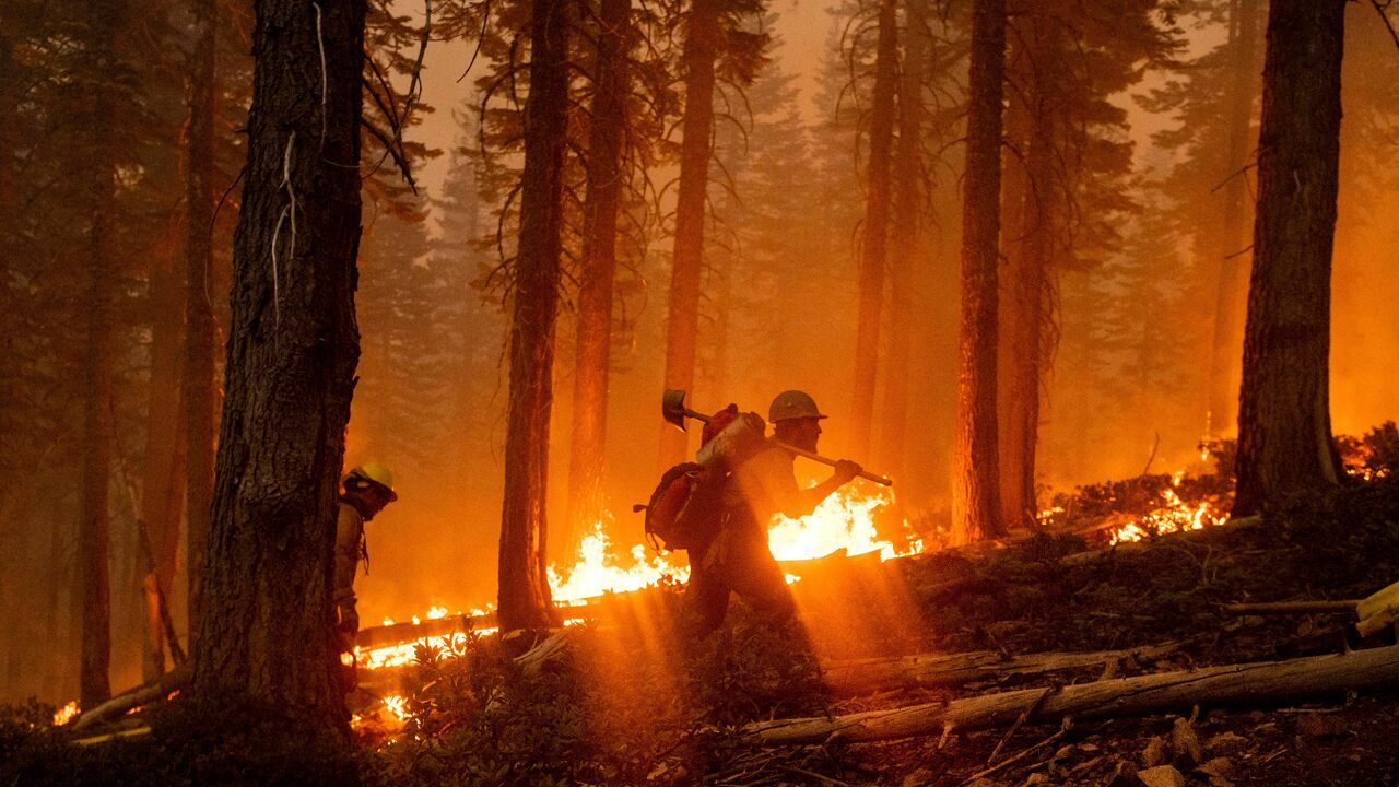 Firefighter Dies In California S El Dorado Wildfire Sparked By Gender Reveal Party California Wildfires Lightning Storm California