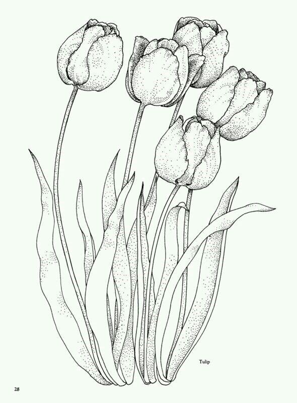 Pin By Sewdaflower On Cizimler