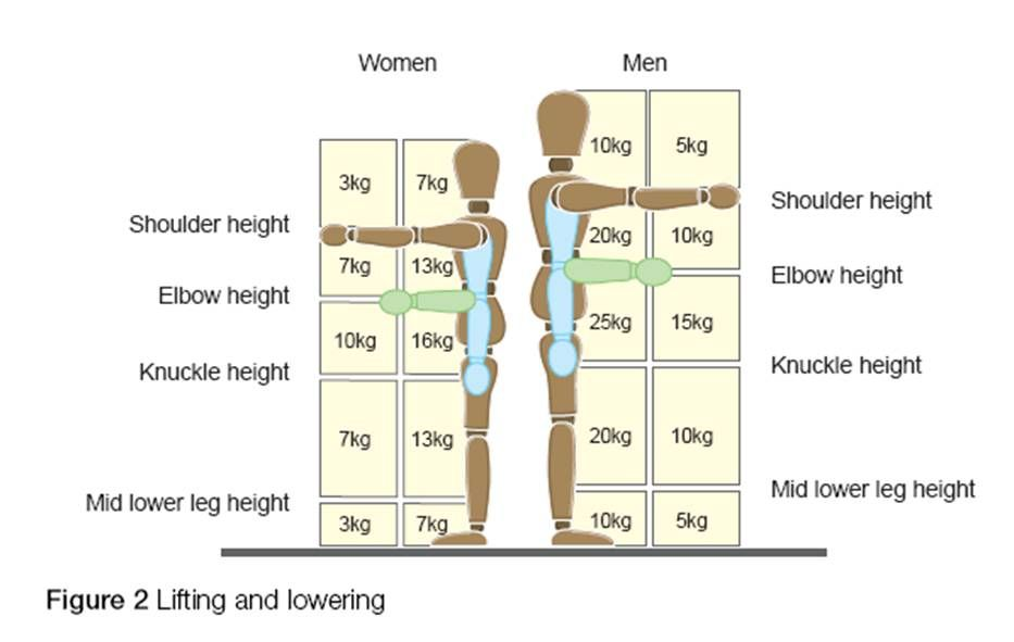 Weight Guidelines for Lifting and Lowering | Manual ...