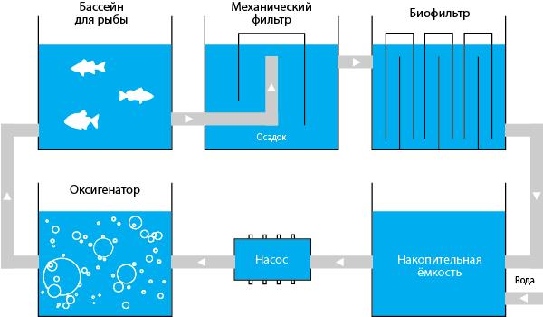 Узв для выращивания рыбы схема оборудования своими 691