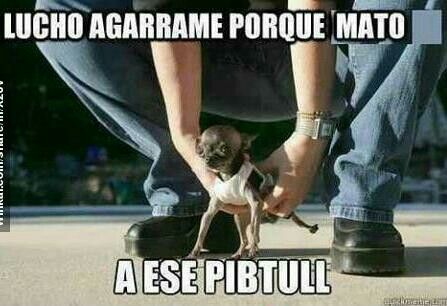 Pin En Top Memes En Espanol