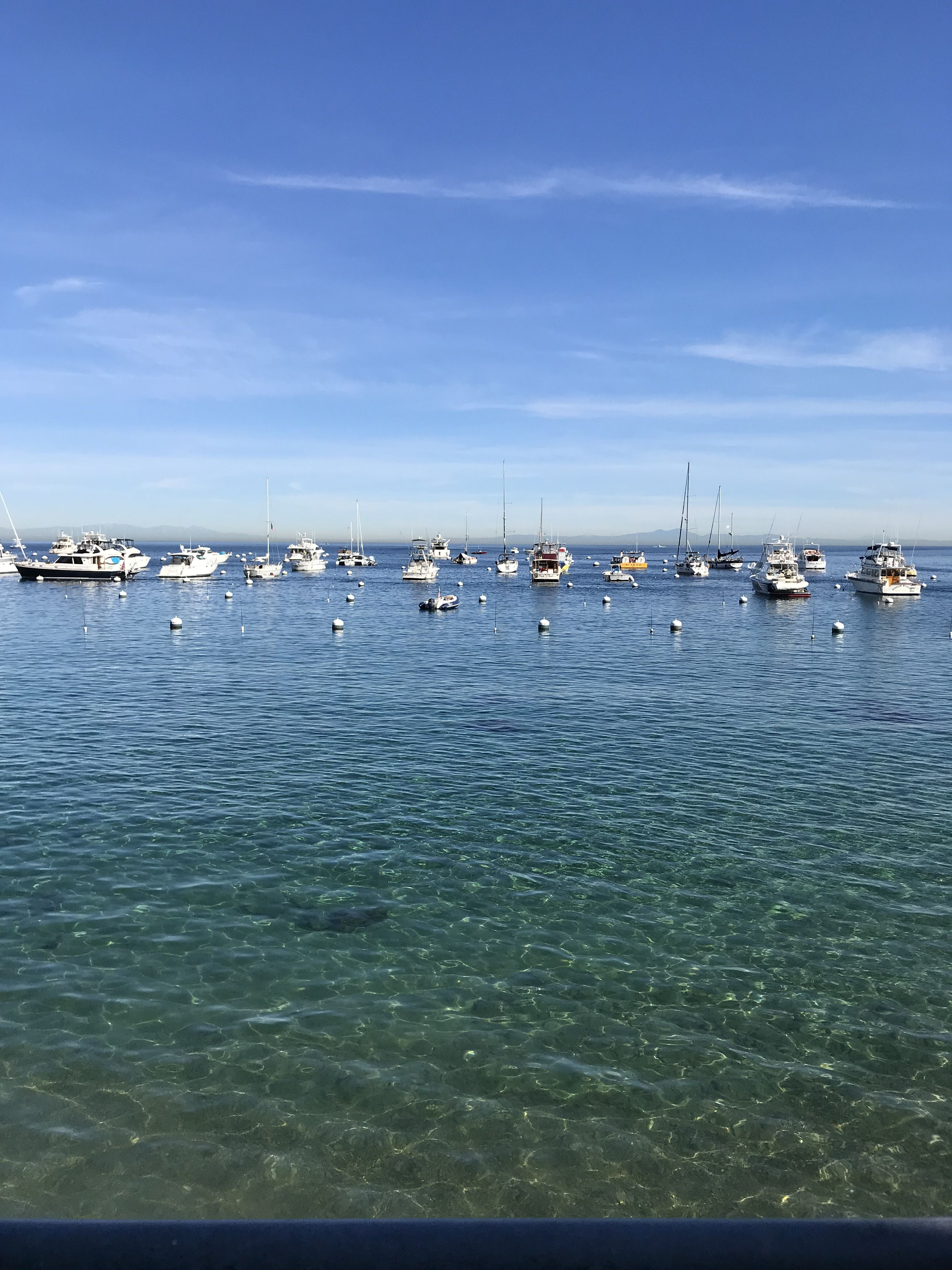 Things to Do in Catalina with Kids Day trips, Trip