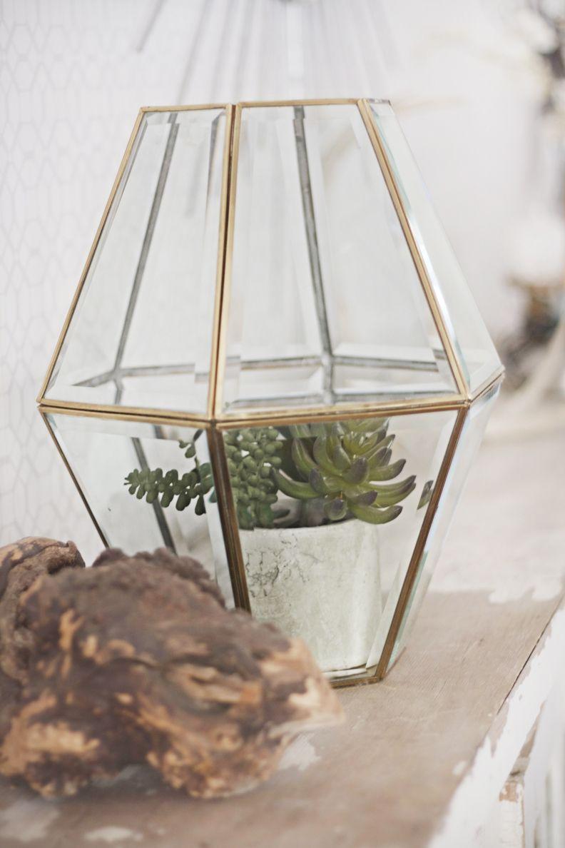Turn a s brass light fixture into a faceted terrarium design