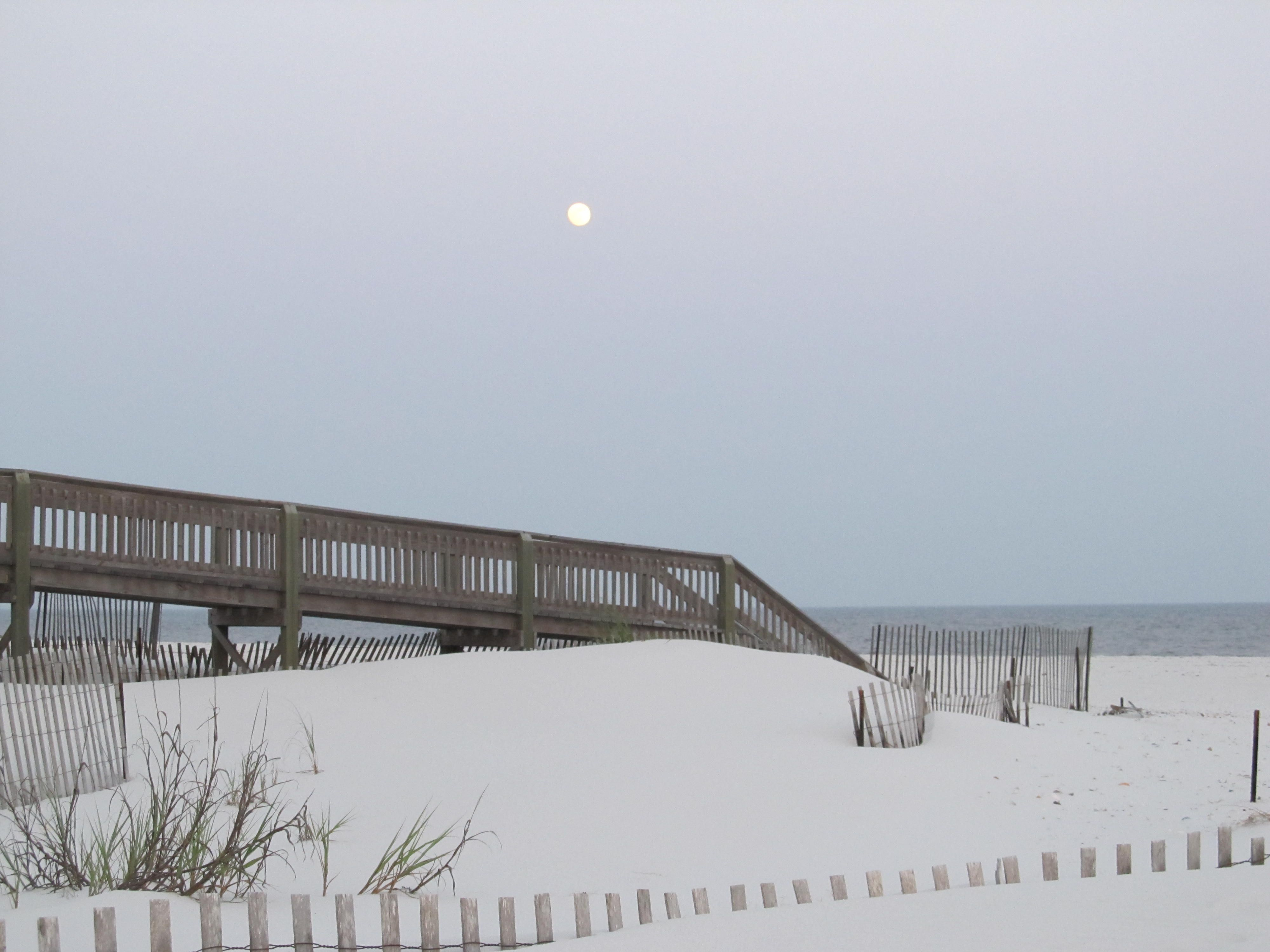 Just one of the pictures taken by me at Gulf Shores, Ala.