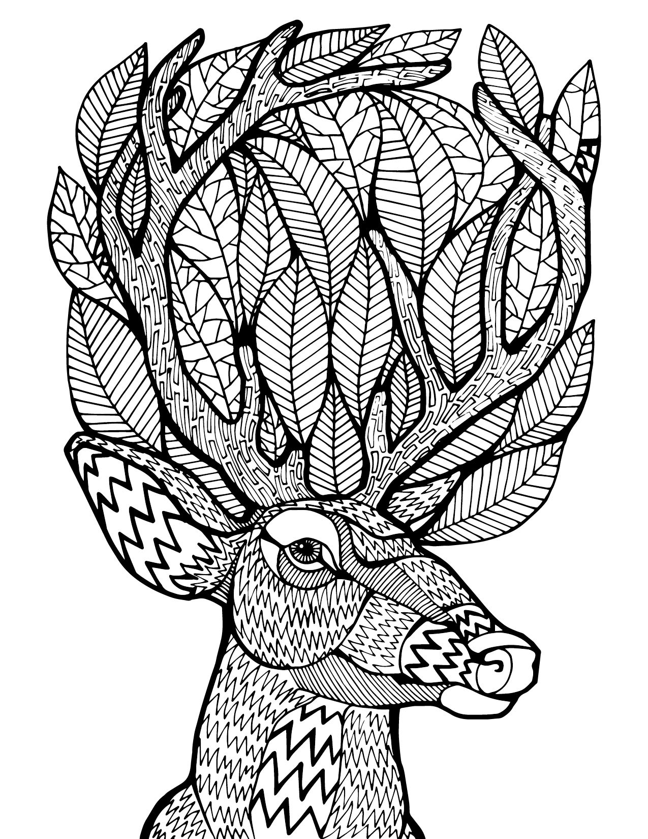 Deer Zentangle | Another free sample from our first book hope you ...