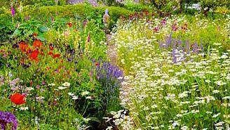 Le Jardin Anglais Un Tour Au Jardin Pinterest Jardins Jardin
