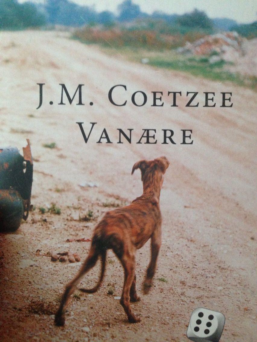 'Disgrace' by J.M. Coetzee