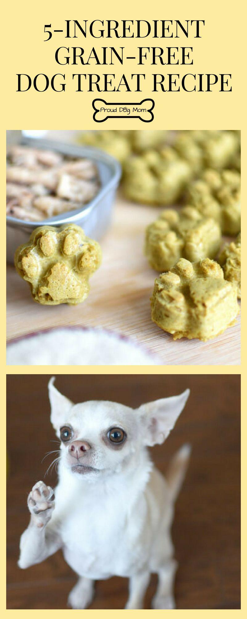 Fish Paws Dog Treat Recipe Diy Dog Treats Dog Treats Grain