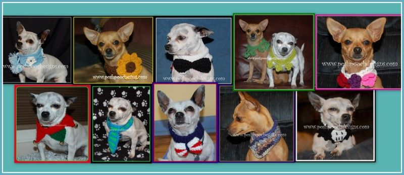 Free Crochet Patterns For Dogs Free Crochet Kitty And Crochet
