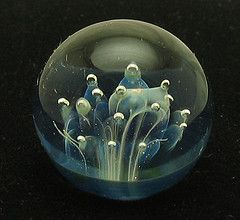 small glass marble with ghost anemone