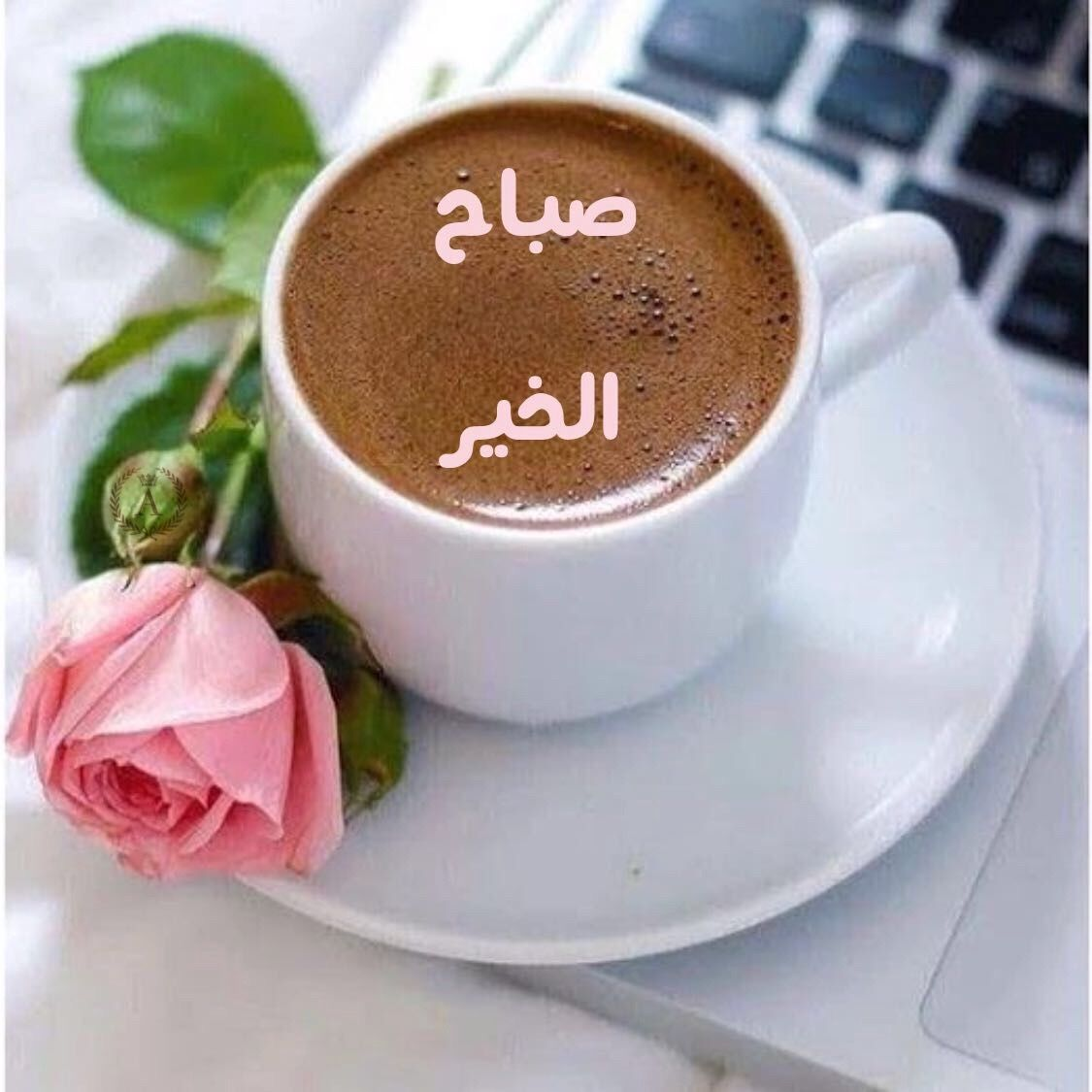 Pin By Rere On صباح الخير Good Morning Arabic Good Morning Beautiful Quotes Good Morning Beautiful