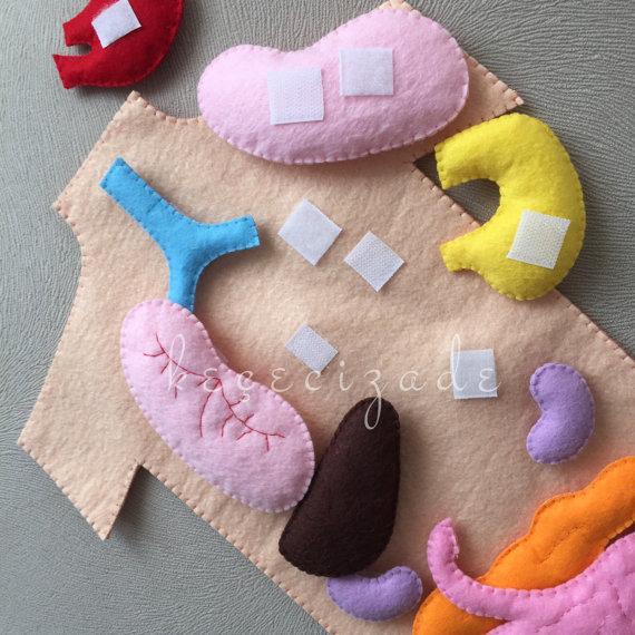 el cuerpo humano | Play and learn · Aprender jugando | Pinterest ...