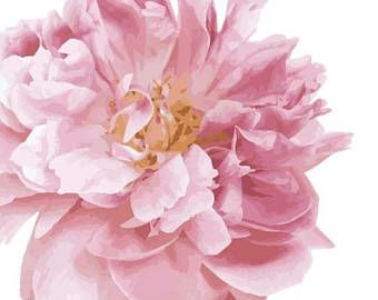 Beautiful Peony Garden Flower Vinyl Decal Wall Decor