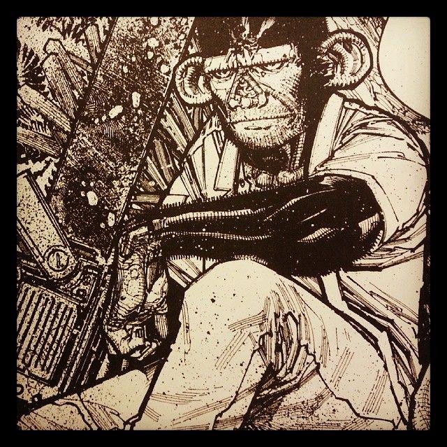 N8 Van Dyke Illustration Apes ink
