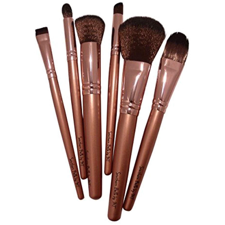 Professional Cosmetic Brush Kit 6 Piece Makeup Brush Set