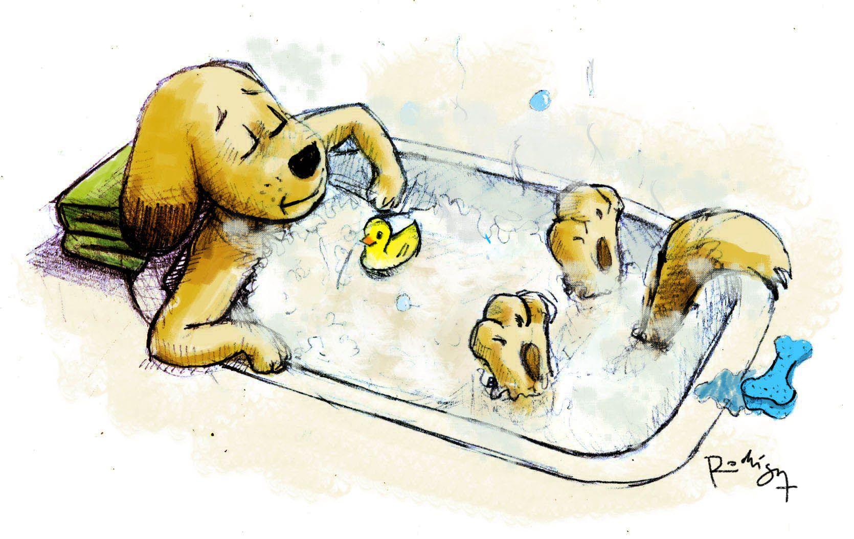 Perro Banandose Cute Illustration Doggie Style Illustration