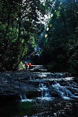 Gavi, a heaven of Misty Paradise with forest, lakes, water falls etc. in the Western Ghats in Kerala State in India