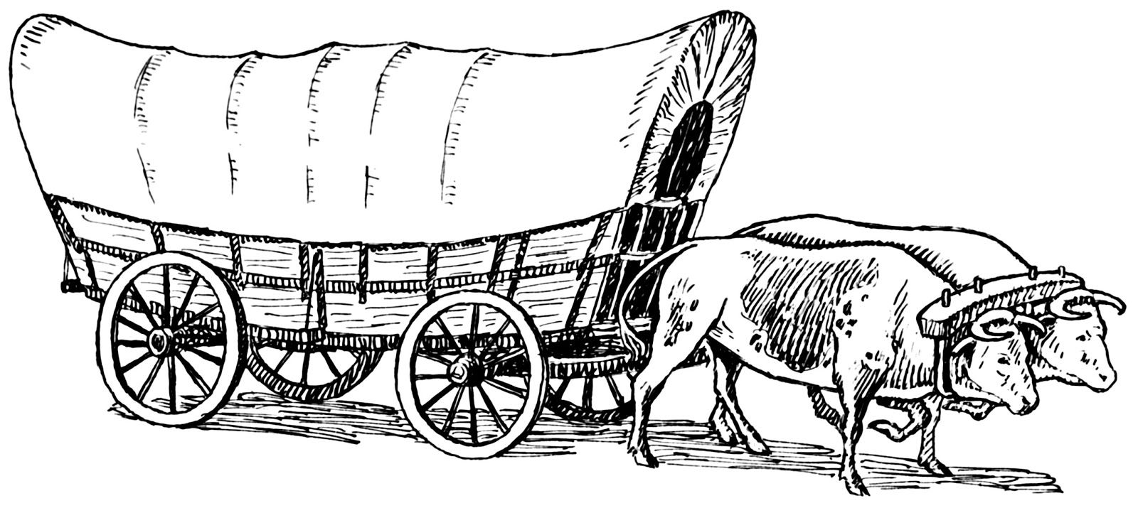 two oxen conastoga wagon sketch | ... West History: The Prairie ...