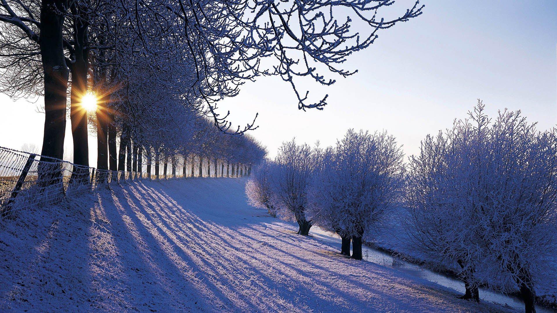 Wallpapers Netherlands Winter Nature Nederland Europe Window 92874 1920x1080px Winterlandschaft Hintergrundbilder Winter Winterbilder
