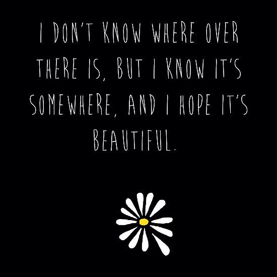 This quote from Looking For Alaska by John Green makes my heart cry a little bit.