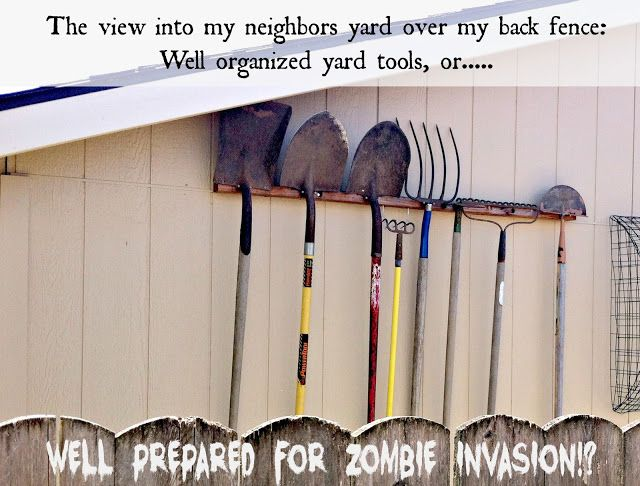 Pondered Primed Perfected: My Secret Zombie Love Affair