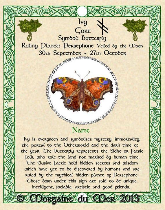 Celtic Zodiac Signs Lunar Astrology Art Print 11x14 August
