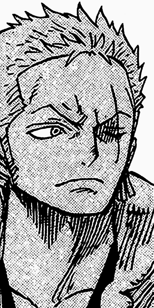 Zoro Understands Luffy Zoro One Piece One Piece Manga Roronoa Zoro