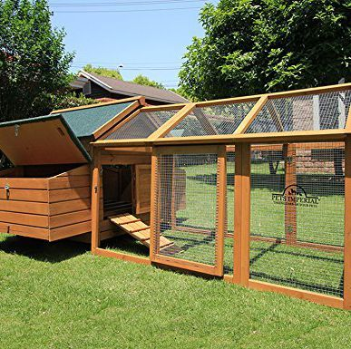 20 Backyard Chicken Coops You Can Buy Right Now | Chickens ...