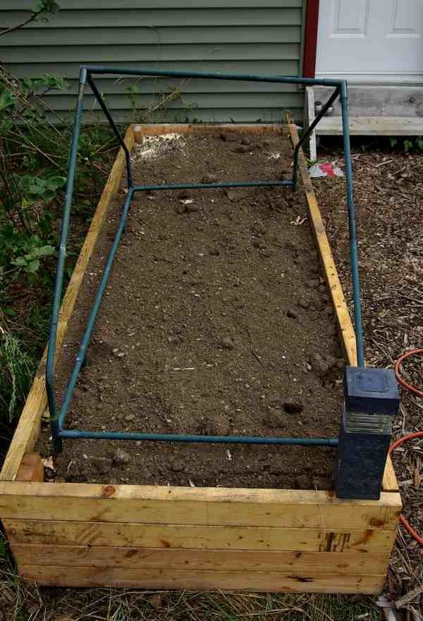 Raised garden bed 3x8 feet in size constructed of diy pressure treated wood