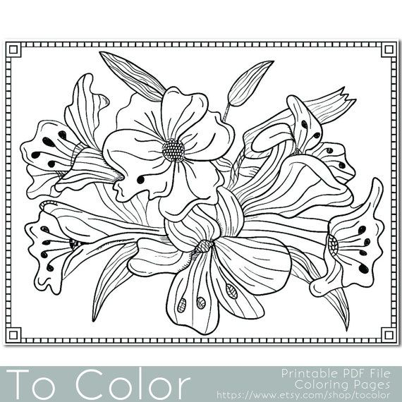 Flower Lilies Floral Coloring Page For Adults PDF JPG Instant Download Book Sheet Grown Ups Digital Stamp