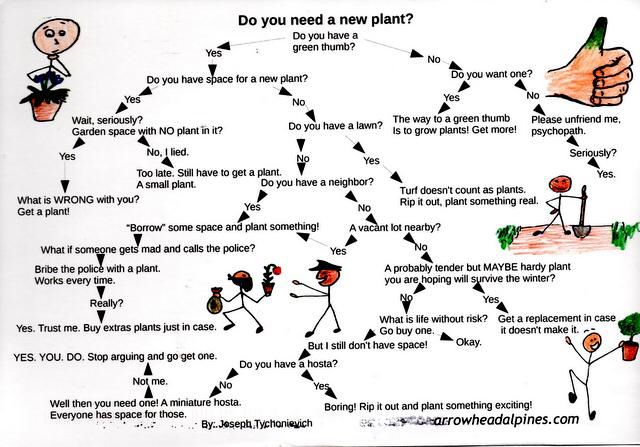 Decision making flowchart for plant purchases GARDEN - MUSINGS